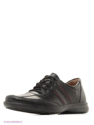 Мужские ботинки BELWEST. Цвет: черный