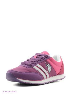Кроссовки U.S. Polo Assn.. Цвет: фиолетовый