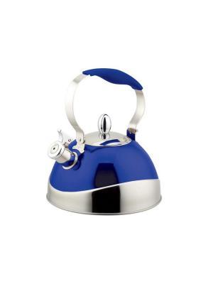 Чайник  TECO 107B-TC. Цвет: синий, серебристый