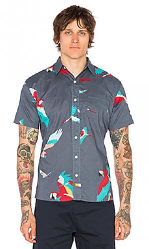 Рубашка на пуговицах parrot Ambsn. Цвет: аспидно-серый