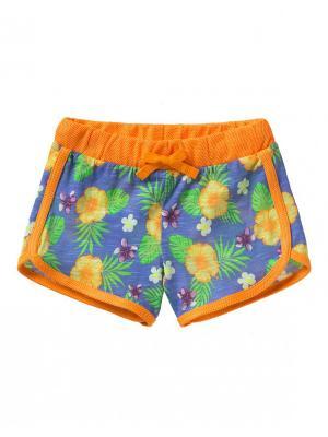 Шорты United Colors of Benetton. Цвет: оранжевый