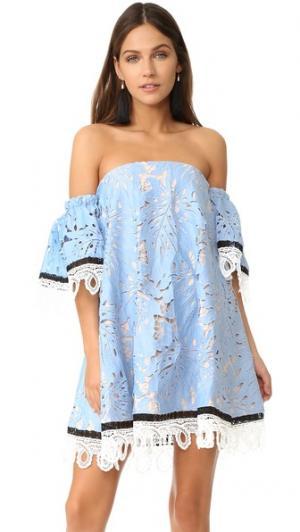 Известные лучше мини-платье Talulah. Цвет: голубой
