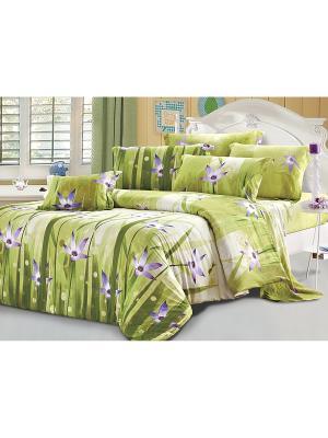 Постельное белье Motive Семейный Amore Mio. Цвет: зеленый, фиолетовый