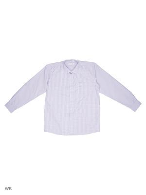 Рубашка FASHION LEADER. Цвет: белый, сиреневый