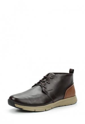 Ботинки Geox. Цвет: коричневый