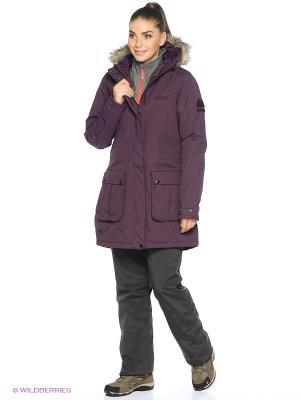 Куртка Schima REGATTA. Цвет: фиолетовый