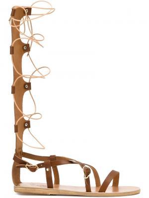 Высокие сандалии Sophia Ancient Greek Sandals. Цвет: коричневый