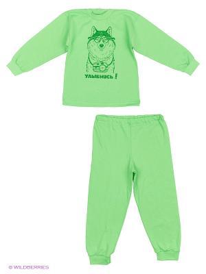 Пижамы KIDONLY. Цвет: зеленый