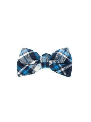 Галстук-бабочка Churchill accessories. Цвет: синий, белый
