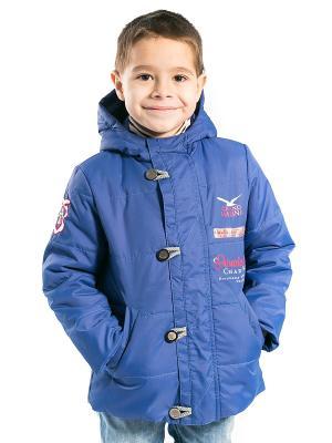 Куртка Богдан Аксарт. Цвет: синий