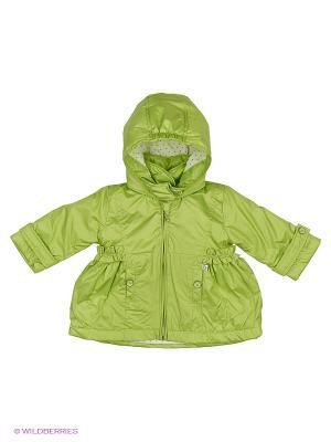 Куртка Wojcik. Цвет: зеленый