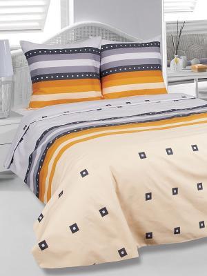 Комплект постельного белья Графика Тет-а-Тет. Цвет: персиковый, темно-синий, оранжевый