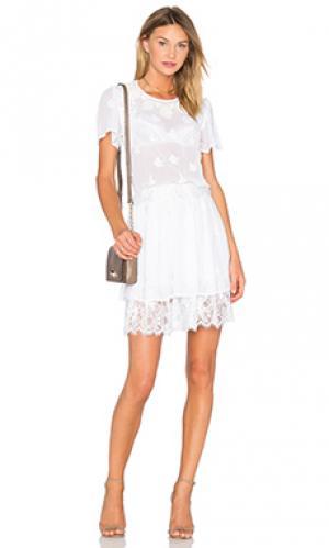 Мини платье embroidered OLCAY GULSEN. Цвет: белый