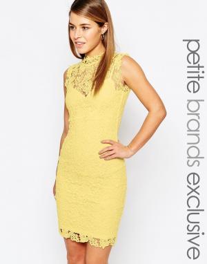 Paper Dolls Petite Кружевное платье с высокой горловиной и вырезом сзади Peti. Цвет: желтый