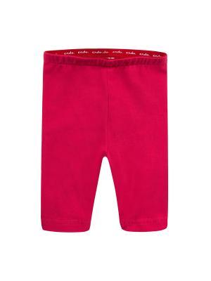 Леггинсы Endo. Цвет: красный