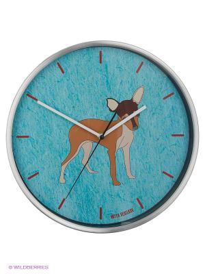 Часы Mitya Veselkov. Цвет: голубой, красный