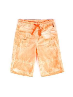 Бриджи Coccodrillo. Цвет: оранжевый