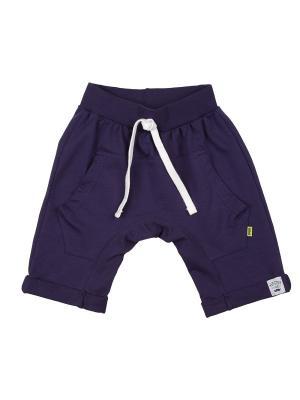 Шорты Mini Maxi. Цвет: фиолетовый