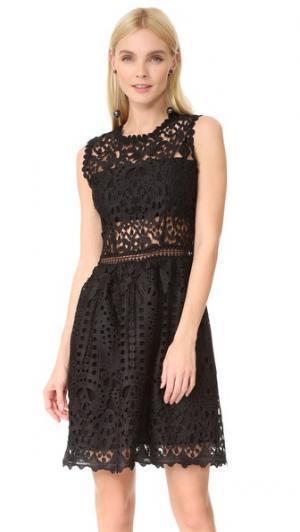 Кружевное платье Lush Ministry of Style. Цвет: голубой