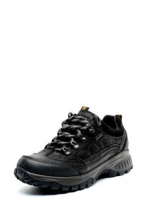 Ботинки трекинговые Greyder. Цвет: черный