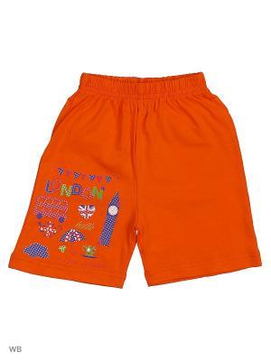 Шорты для девочки Bonito kids. Цвет: оранжевый