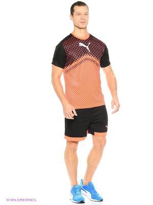 Шорты IT evoTRG Shorts Puma. Цвет: черный, оранжевый