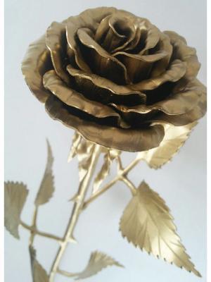 Роза Chic a loco. Цвет: золотистый