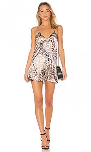 Платье-комбинация the bengal LAcademie L'Academie. Цвет: коричневый