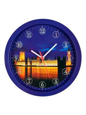 Часы Лондон Miolla. Цвет: серо-голубой