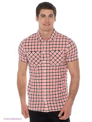 Рубашка DOCTOR E. Цвет: розовый, черный