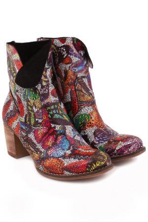 Ботинки ZAPATO. Цвет: multicolour