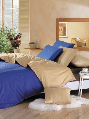Комплект постельного белья Arya Cy 01. Цвет: синий, золотистый