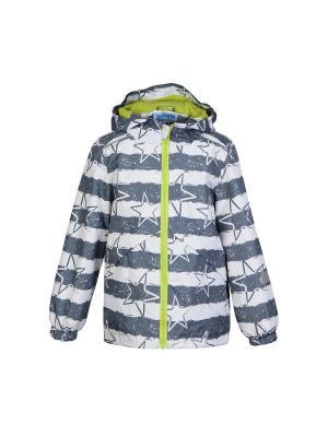 Куртка Oldos. Цвет: серый