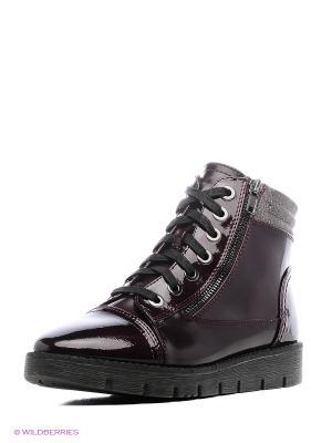 Ботинки Jana. Цвет: фиолетовый
