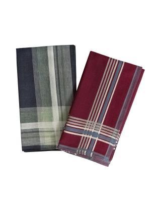 Платки носовые ZLATA KORUNKA. Цвет: бордовый, голубой