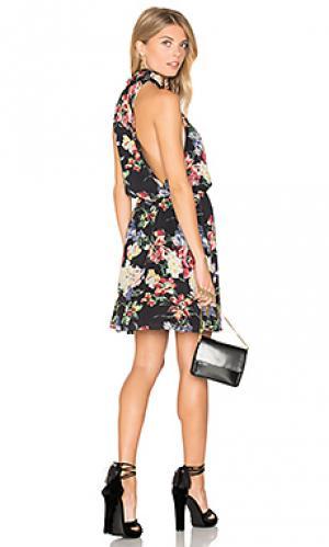 Платье для лаунджа Haute Hippie. Цвет: черный