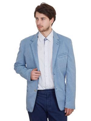 Пиджак ROY. Цвет: серо-голубой, светло-серый