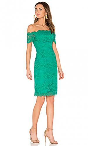 Платье moreen BB Dakota. Цвет: зеленый