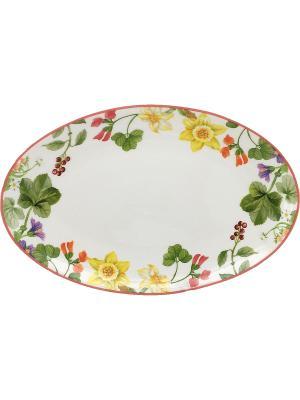 Блюдо овальное 36*25см. Tognana porcelane. Цвет: белый
