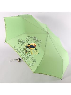 Зонт Airton. Цвет: зеленый