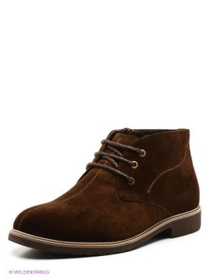 Ботинки TERRA IMPOSSA. Цвет: темно-коричневый