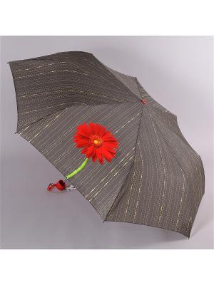 Зонт Airton. Цвет: серо-зеленый, красный