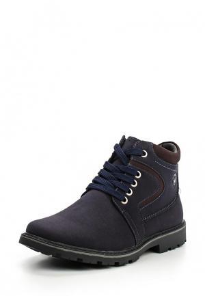 Ботинки Zenden Collection. Цвет: синий