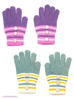 Перчатки, 2 пары FOMAS. Цвет: серо-зеленый, фиолетовый