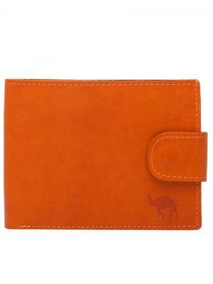 Портмоне Forte. Цвет: оранжевый