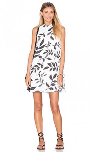 Платье scottia BB Dakota. Цвет: белый