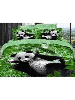 Постельное белье  евро 4 нав. 50*70, 70*70 Diva Afrodita. Цвет: зеленый