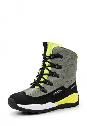 Ботинки Geox. Цвет: хаки