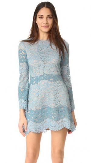 Кружевное мини-платье Dream Lover WAYF. Цвет: голубой