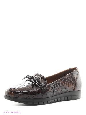 Туфли Dino Ricci. Цвет: темно-коричневый